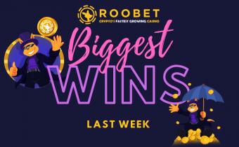 Biggest Wins on Roobet in Summer 2021